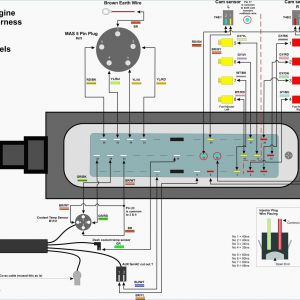 Rj11 Wiring Diagram Using Cat5 - Home Phone Wiring Diagram Using Cat5 Cable Best Rj11 Telephone Wiring Diagram Australia Save Fresh Rj11 10b