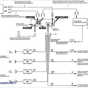 Sony Marine Stereo Wiring Diagram - sony Xplod Car Stereo Wiring Diagram 50wx4 at Radio 5c