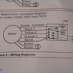 Sta Rite Pump Wiring Diagram - Sta Rite Pump Wiring Diagram Gocn Me On Sta Rite Pump Installation Hayward Pool Pump Wiring 1m