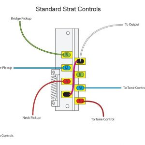 Strat Wiring Diagram 5 Way Switch - the Inner Workings A 5 Way Switch and Various Wiring Options Outstanding Light Diagram 2d