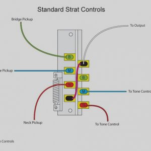 Stratocaster Wiring Diagram 5 Way Switch - Unique 5 Way Switch Wiring Diagram Light Wellread Me House In 8q