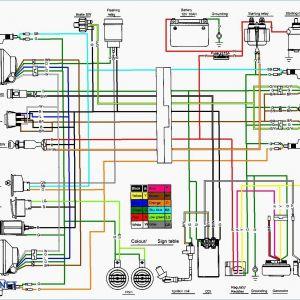 Taotao 110cc atv Wiring Diagram - Taotao 110 atv Wiring Diagram Daigram Showy Tao Loncin Quad Wiring Diagram 12e