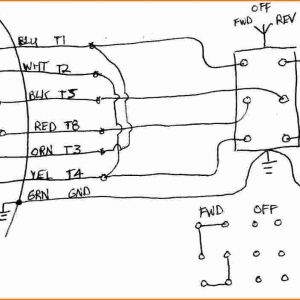 Teco Westinghouse Motor Wiring Diagram - Dayton Capacitor Start Motor Wiring Diagram Wiring Diagram Rh Magnusrosen Net 230 Single Phase Wiring Diagram 12 Lead Motor Wiring Diagram 2a