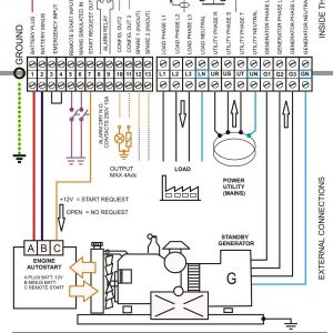 Transfer Switch Wiring Diagram - Automatic Transfer Switch Wiring Diagram Free New Generac Automatic Transfer Switch Wiring Diagram Throughout Free 13q
