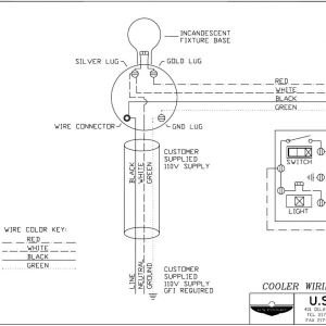 Walk In Freezer Wiring Schematic - Walk In Cooler Wiring Diagram Wiring Diagrams Different Free Image About Wiring Diagram Wire Rh 13b
