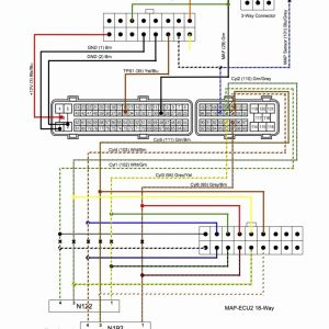 White Rodgers 90 113 Wiring Diagram - White Rodgers 90 113 Wiring Diagram Unique Wiring Diagram 1jz Engine Wiring Diagram Awesome toyota Ecu 6f