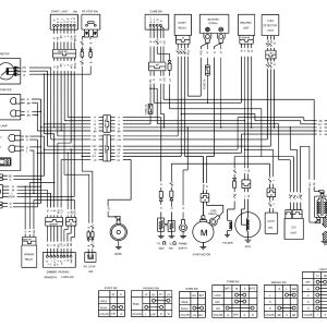 White Rodgers thermostat    Wiring       Diagram      Free    Wiring       Diagram