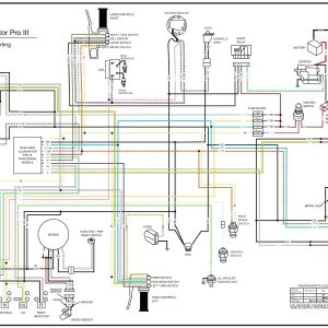 Wiring Diagram PDF: 2003 Harley Davidson Road King Wiring ...