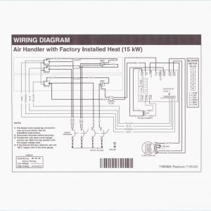 Wiring Diagram for Mobile Home Furnace - Stelpro Electric Furnace Wiring Diagram Fresh Electric Furnace Wiring Diagram New Intertherm Furnace Wiring 13n
