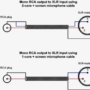 Xlr to Mono Jack Wiring Diagram - Xlr Connection Diagram Diy Enthusiasts Wiring Diagrams U2022 Rh Wiringdiagramnetwork today Audio Xlr Wiring Diagram Xlr to Rca Diagram 10s