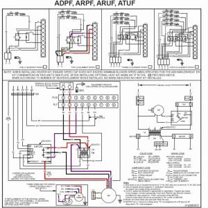 York Air Handler Wiring Diagram - Time Delay Relay Wiring Diagram Elegant York Heat Pump for Alluring Rh Deconstructmyhouse org 4d