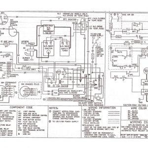 York Heat Pump Wiring Diagram - York Heat Pump Wiring Diagram Gimnazijabp Me with 5m