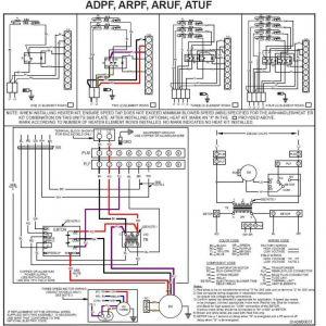 York Heat Pump Wiring Diagram - York Heat Pump Wiring Diagrams Wiring Diagram U2022 Rh Growbyte Co 19i