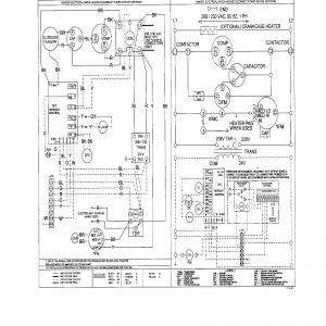 York Heat Pump Wiring Diagram - York Wiring Diagram Heat Pump Wire Center U2022 Rh Escopeta Co 14f